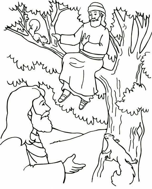 15++ Coloring page of zacchaeus in a tree free download