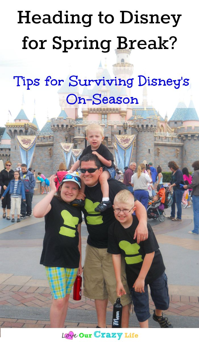 Taking a vacation to Disney during spring break, summer or Christmas break? Check out these must read tips for surviving Disneyland crowds  via @thebeccarobins