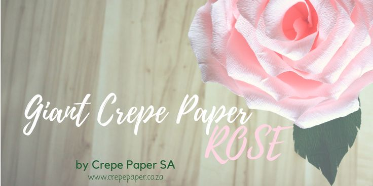 Are you planning a South African wedding? Why not go for giant crepe paper roses for decorations? Visit www.crepepaper.co.za