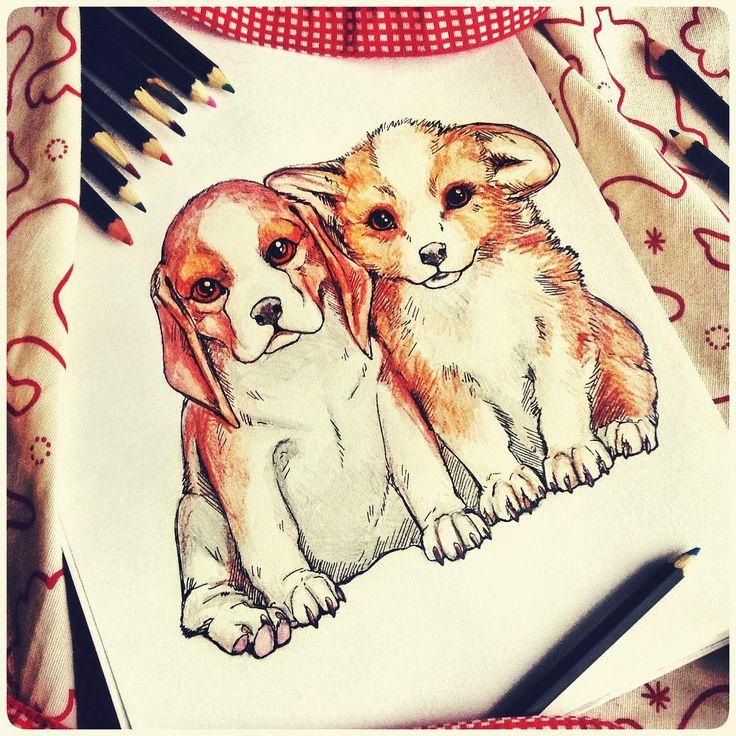 Друг всегда готов протянуть лапу помощи, дать поносить свой ошейник, помочь утащить со стола хозяйский обед и вырыть подкоп на соседний участок. Акварельные карандаши, цветные карандаши, гелевая ручка. 3/1000. #week_with_forrsiko #sketch #art #dog #instaart #animal #drawing #рисунок #арт #творчество #собака