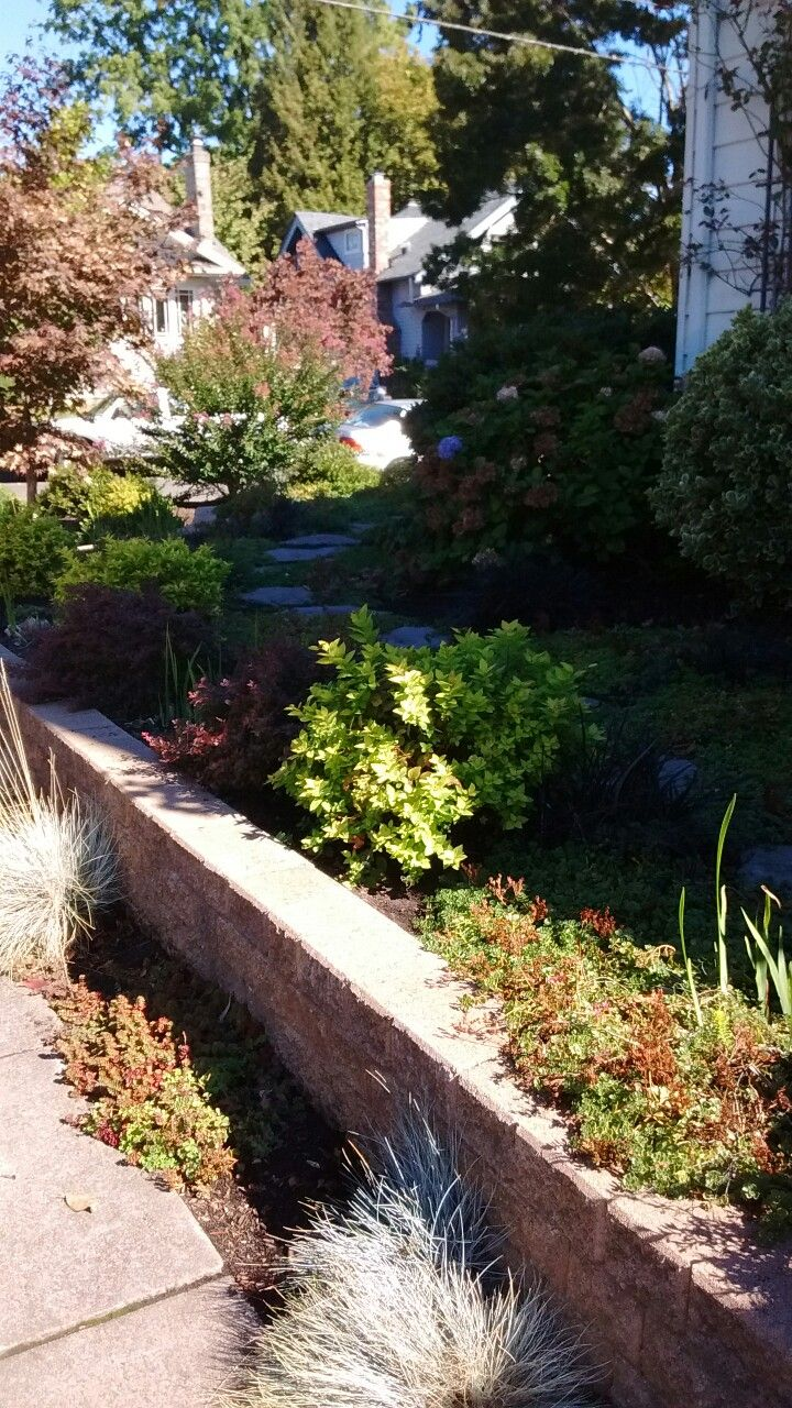 Pathways amp steppers sisson landscapes - Front Yard