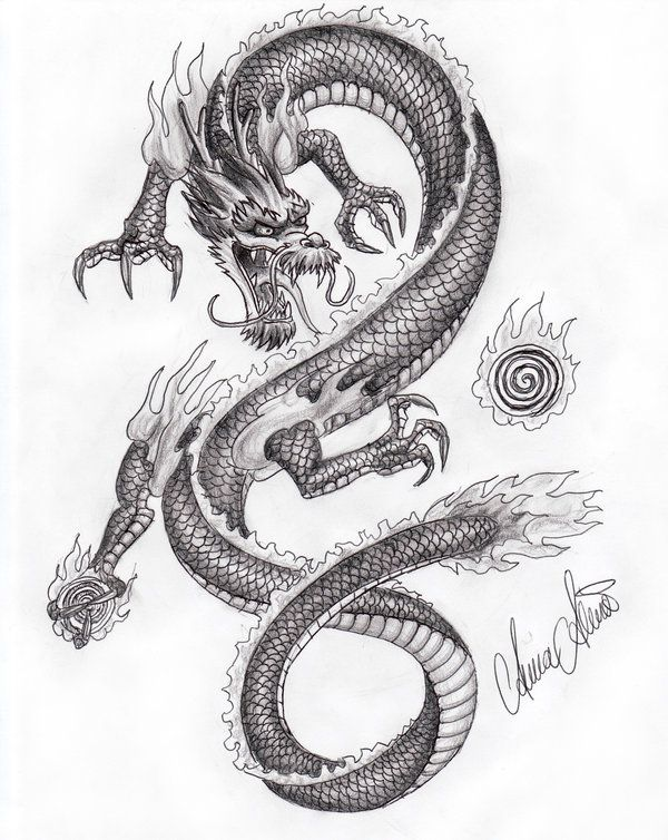 Oriental Dragon | Chinese dragon by ~XiphoidHonei on deviantART