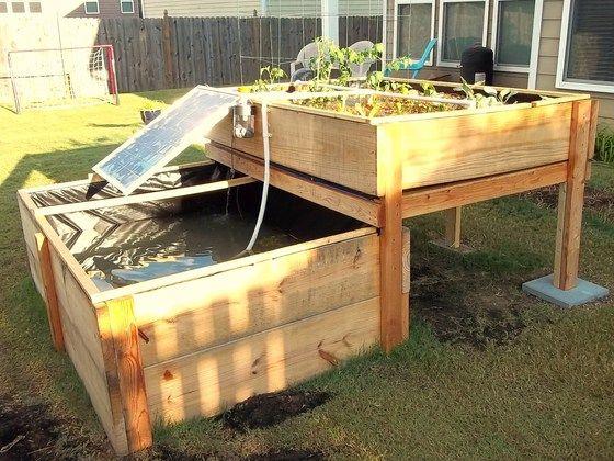 DIY Backyard Aquaponics System by Renewable DIY, via Kickstarter.