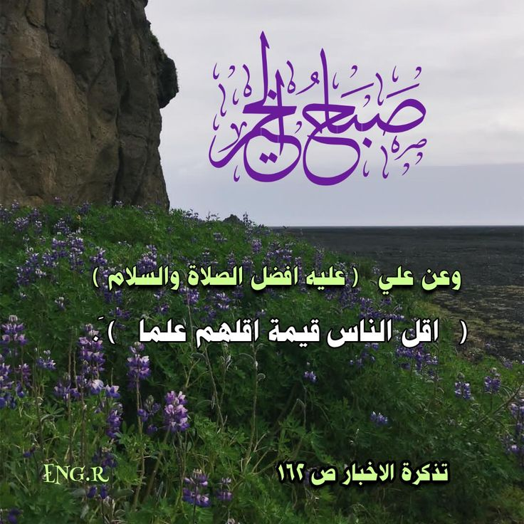 Pin By الوردة الحمراء On صباح الخير Imam Ali Quotes Ali Quotes Wisdom
