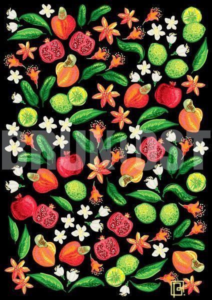 BRUNO OST | tablet | Lime, Cashew and Pomegranate | Digital Art #brunoost #digital #art #drawing