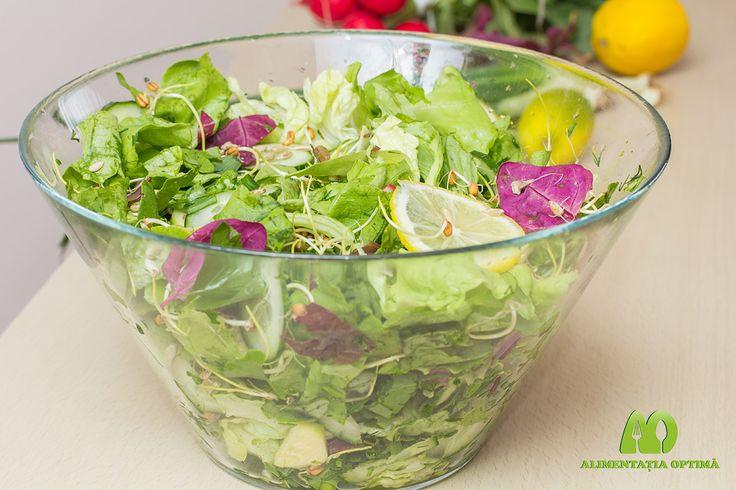 Salată de primăvară » Alimentația Optimă