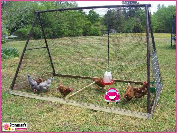 Got an old swing frame? Why not upcycle it into a portable chicken run -  pop some wheels on one end to make it easy to manoeuvre around the garden - easy!