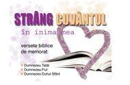 Strâng Cuvântul - cutiuta cu versete - un ajutor pentru memorarea versetelor din Biblie