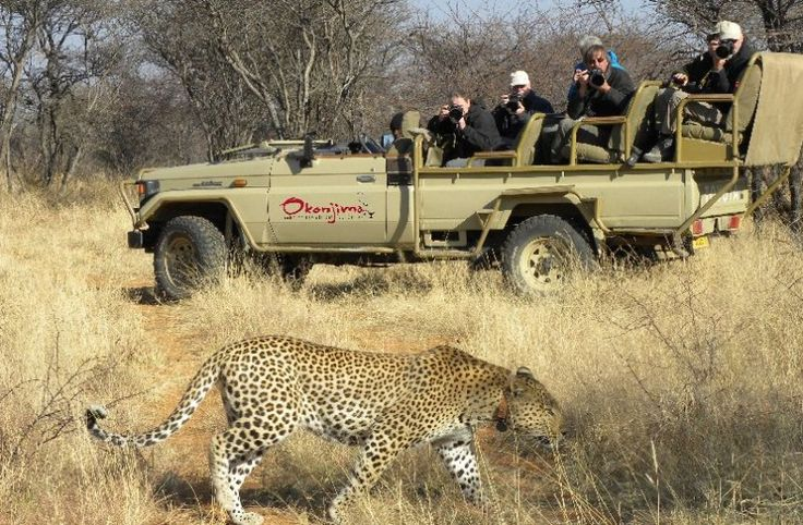 How would you like the freedom of exploring Namibia at your own pace?     Windhoek    Etosha National Park    Damaraland    Swakopmund    The Namib Desert   Do it in style & let us take care of the logistics >