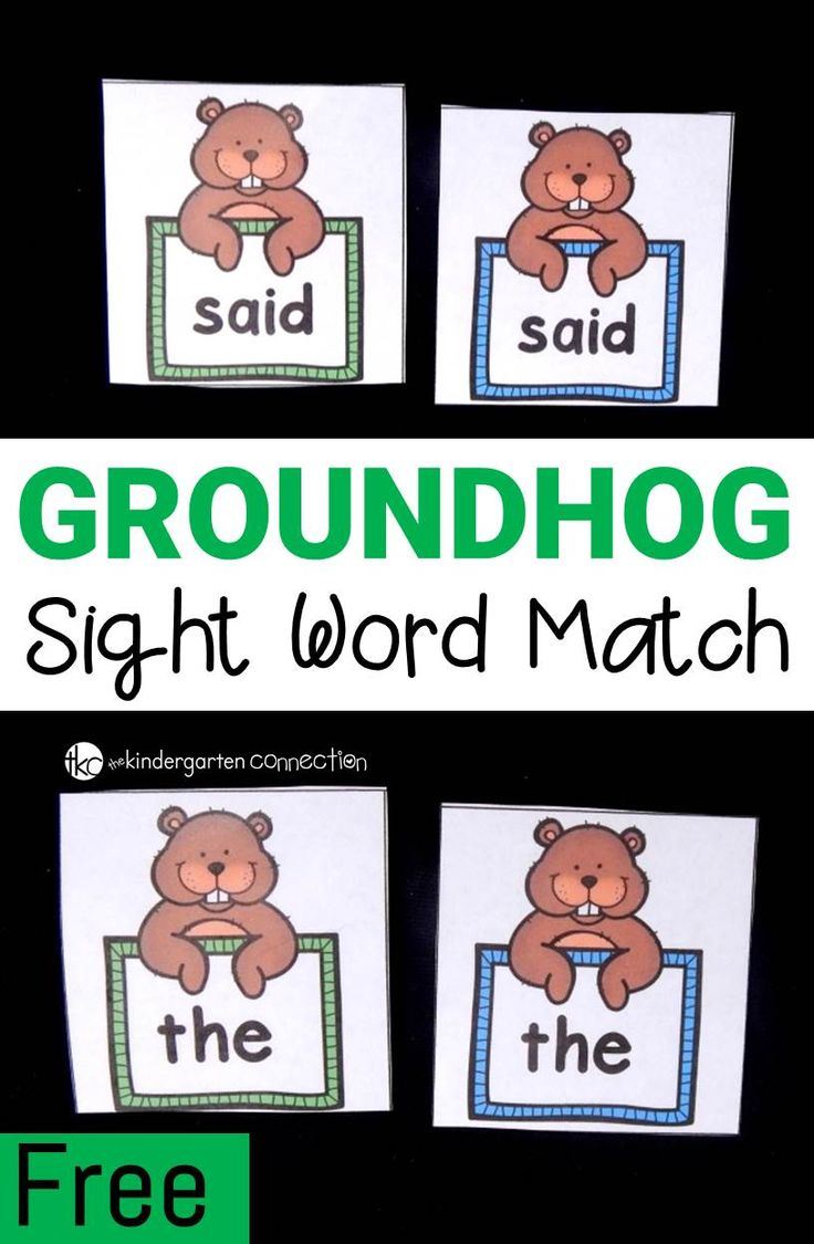 Work on any sight word you need with this FREE and editable sight word matching game! With its groundhog theme, it is perfect for February!