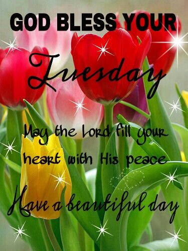 TUESDAY BLESSINGS!!!