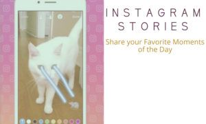 How to Use Instagram Stories Like A Pro