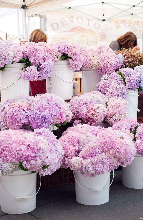 buckets o flowers