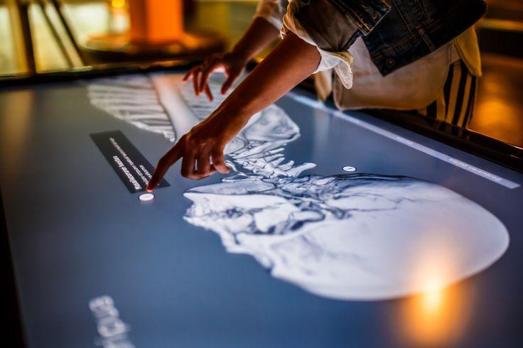 Conociendo el cuerpo humano. Autopsia virtual. Realización de fotografías publicitarias de Imago Comunicación e Imagen, para el diseño de folletos corporativos de Eureka! Zientzia Museoa.