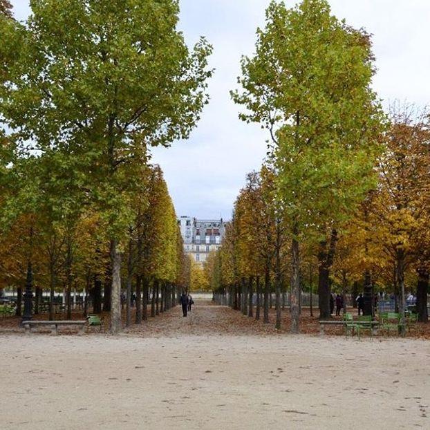 Jardin des
