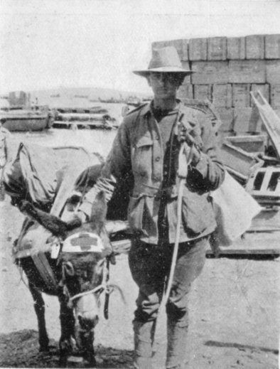 The Man with the Donkey (John Simpson Kirkpatrick)