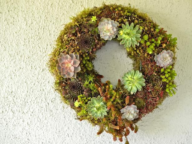 Make a Living Wreath for Spring : Decorating : Home & Garden Television