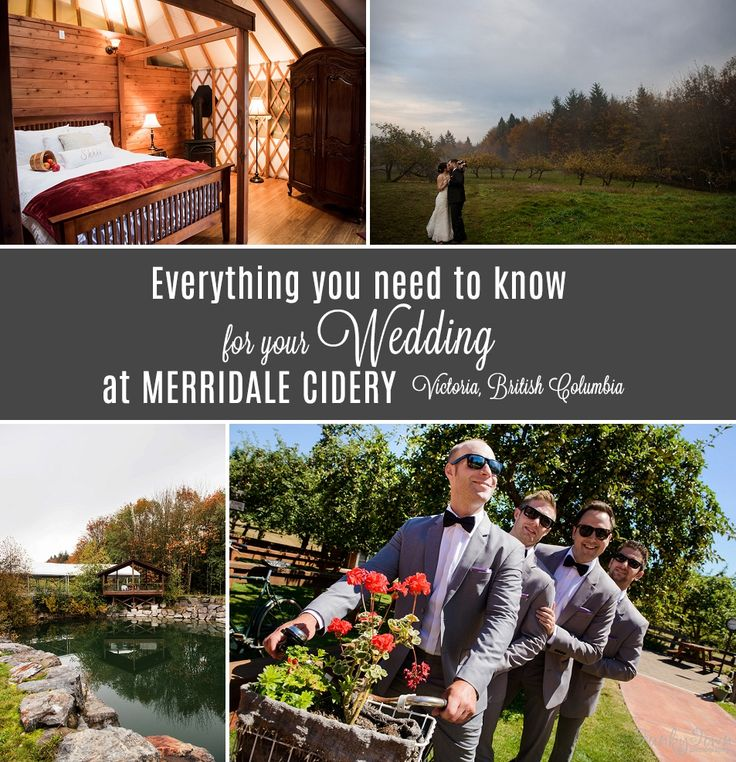 Wedding Photography Merridale Cidery  - FunkyTown Photography www.funkytownphotography.com