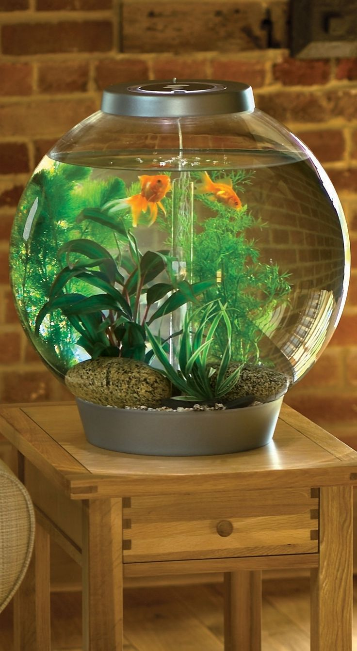 A beautiful example of living art, the BiOrb ® Aquariums combine the clean, modern look of a traditional fish bowl with the performance of a high-tech aquarium.