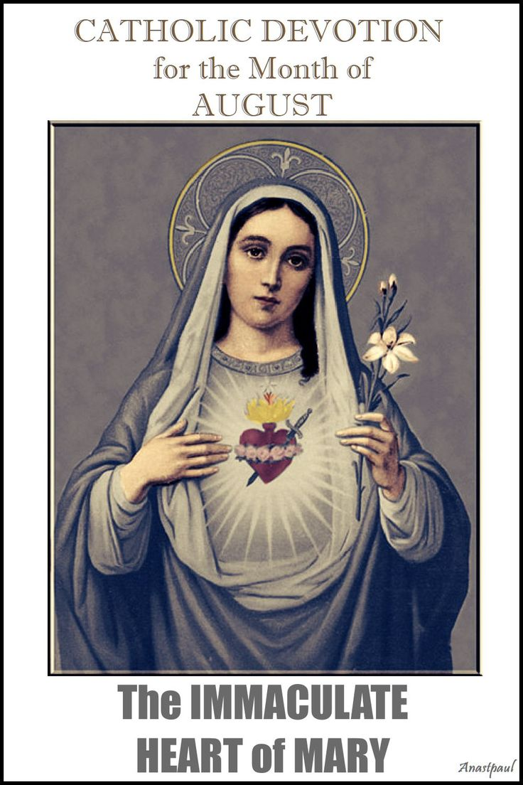 The month of August is dedicated to the Immaculate Heart.  Since the 16th century Catholic piety has assigned entire months to special devotions. The month of August is traditionally dedicated to the Immaculate Heart of Mary. The physical  heart of Mary is venerated (and not adored as the Sacred Heart  of Jesus) because it is united to  her person and is the seat of her love (especially for her divine   Son), virtue and inner life..... ~ AnaStpaul - August 1
