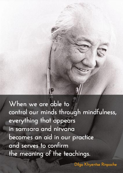 Perceiving everything in its natural purity ~ Dilgo Khyentse Rinpoche http://justdharma.com/s/shqap  Someone who has been captured with a hook has no option but to go wherever he is led. In the same way, if we catch hold of our mind - which risks being distracted by the objects of the six senses - with the hook of mindfulness, and with vigilance and carefulness, this will be of enormous benefit. We should use this watchman to constantly check how many positive or negative thoughts and…