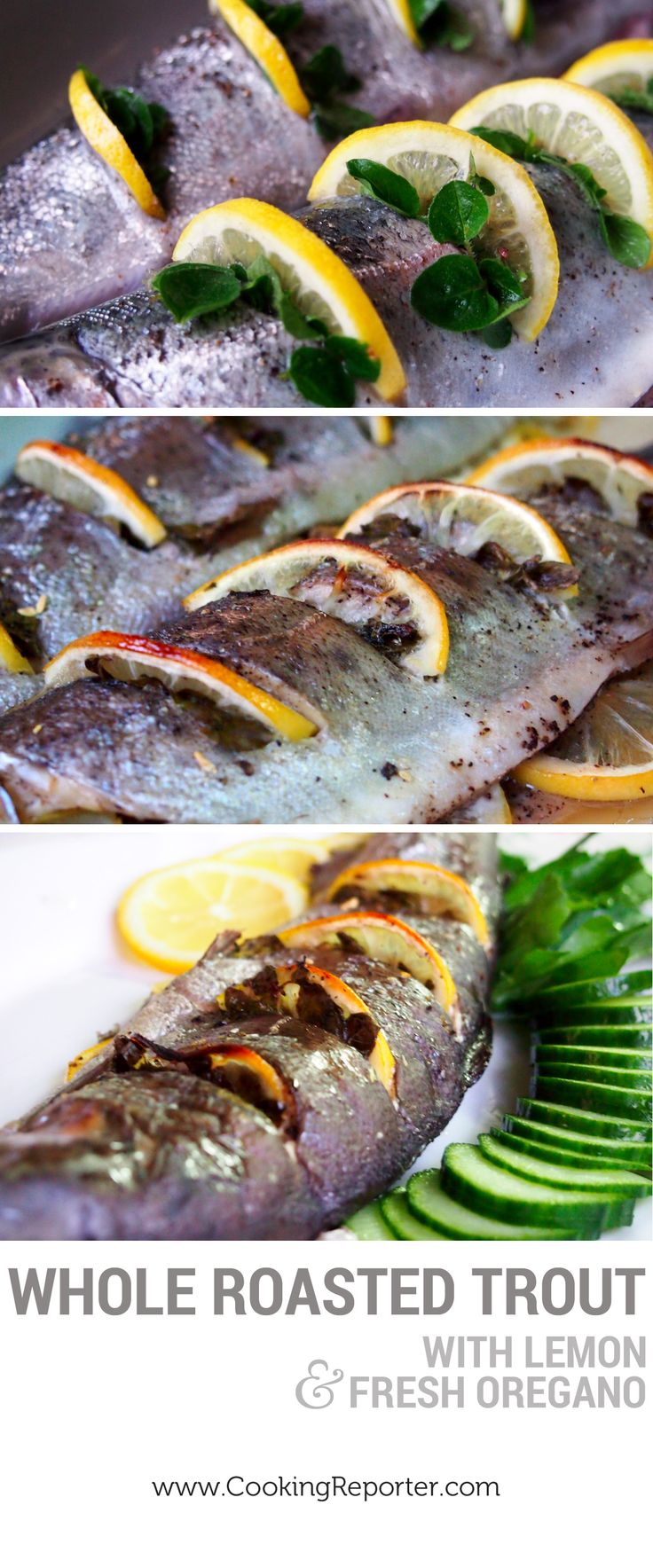 Whole Roasted Trout With Lemon And Thyme Recipes — Dishmaps