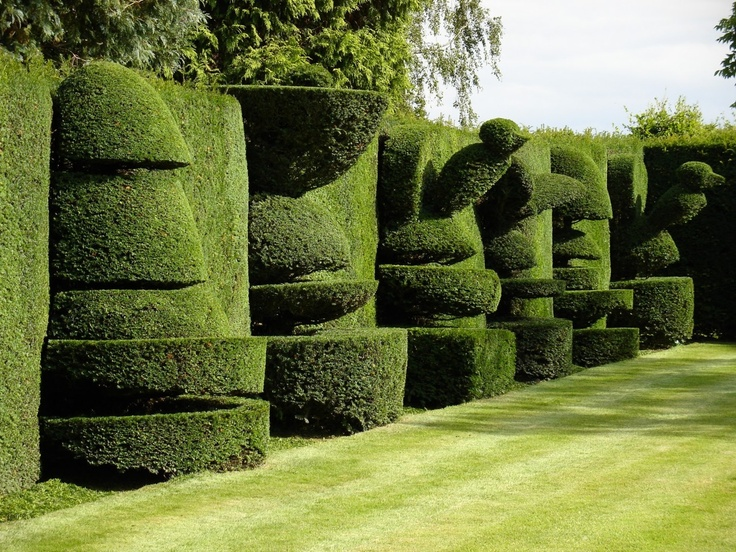Wonderful topiary in a private garden in North Yorkshire, England