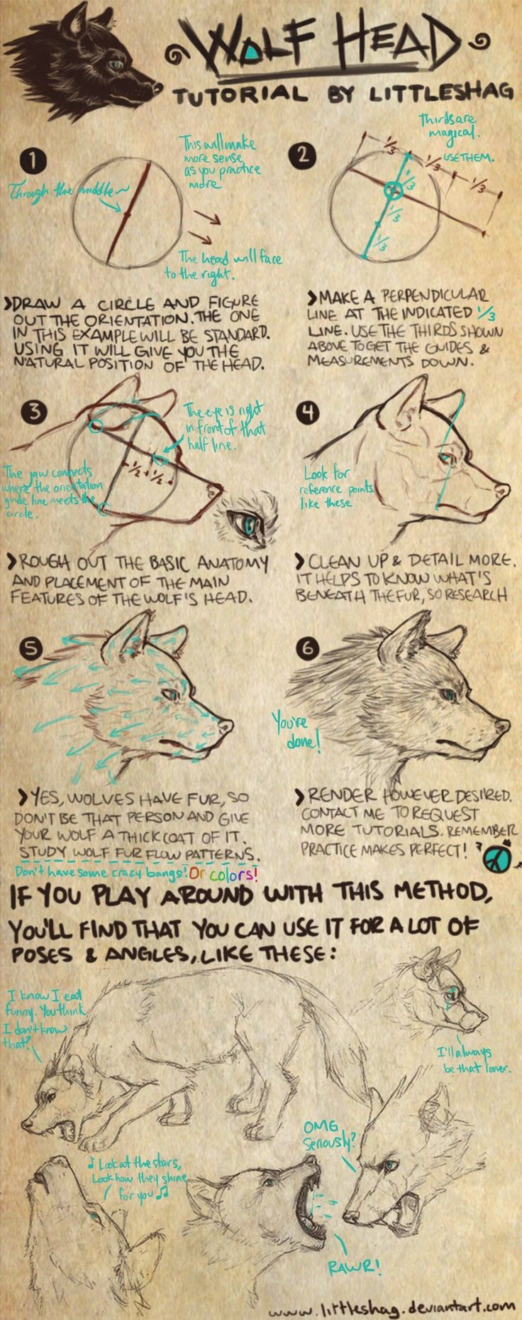 Wolf Head Tutorial By Soas95iantart On @deviantart