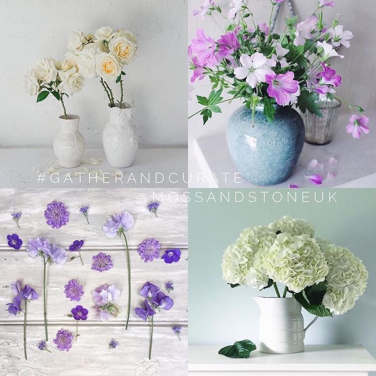 There have been some more beautiful entries in the #gatherandcurate hashtag challenge this week. Thank you so much to everyone who has taken part - I am really enjoying your gorgeous gatherings! I particularly liked these four lovelies!  TL: @krissmacd  TR: @faffing.with.flowers  BL: @hannie65  BR: @bellavisione  Do have a look at their lovely accounts! If you would like to join in next week simply tag your image with #gatherandcurate @mossandstoneuk and I will post my favourites next…