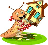 Keganasan rayap yang dapat melahap semua bagian Bangunan yang terbuat dari sellulosa membuat kerugian yang sangat besar dan kami Perusahaan Anti Rayap hadir membebaskan Bangunan Anda dari Penyerangan Rayap