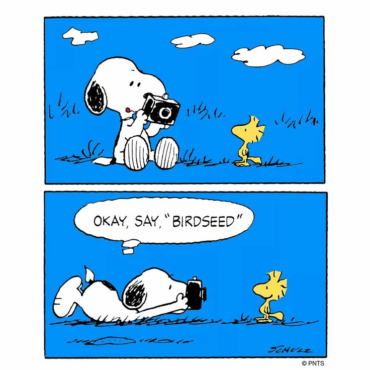 "Snoopy ❤ Say ""birdseed""                                                                                                                                                                                 More"
