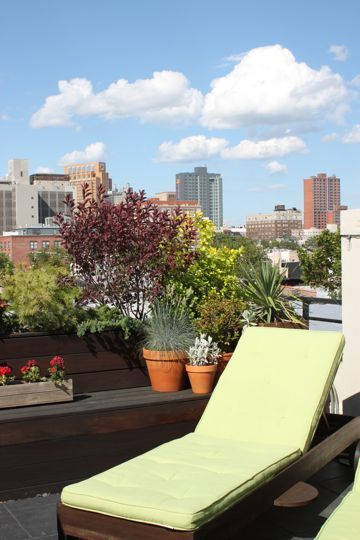 brooklyn-roof-deck - would love to have chairs like this for our roof deck...   not sure we'd have enough space