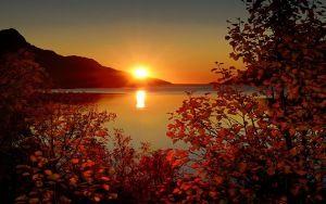 blätter, rot, Niederlassungen, Herbst, Berg, Niedergang, see, reflexion, natur, landschaft Hintergrundbilder