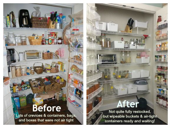 Before and after pantry moths: 100 Days of Real Food-excellent for explaining why NOT to keep food in their origional store packaging....ewww!