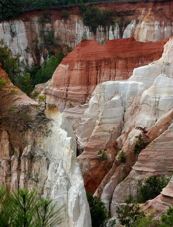 "Visit #Georgia's ""Little Grand Canyon"" in Lumpkin!  Want to go there when we travel for Connors graduation."