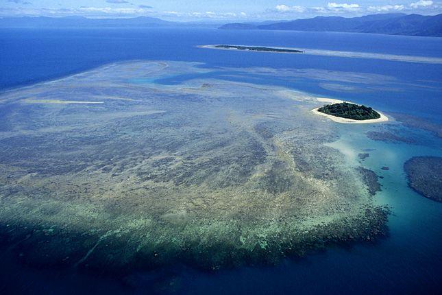 Sajnos, a Nagy-korallzátonynak annyi!