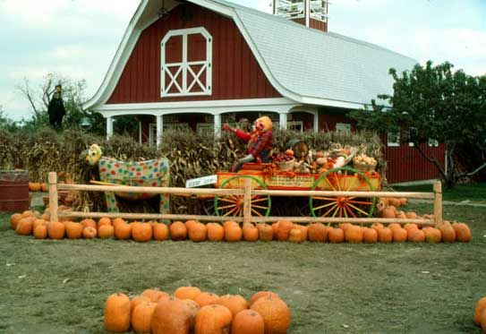 Tice Farms, Chestnut Ridge Road, Woodcliff Lake, NJ. The farm dates all the way back to 1808. It eventually grew to a 250 acre farm. I remember going there when I was a kid to select that very special pumpkin for Halloween. Their fresh produce was delicious, especially their corn on the cob! They also sold fruits, baker goods, freshly made apple cider from their cider mill. . . Now, Tice's has been sold off to developers.