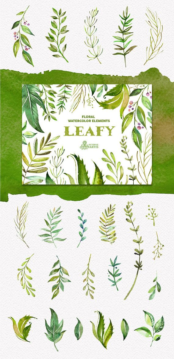 Leafy. Floral Elements. Watercolor branches leaves by OctopusArtis