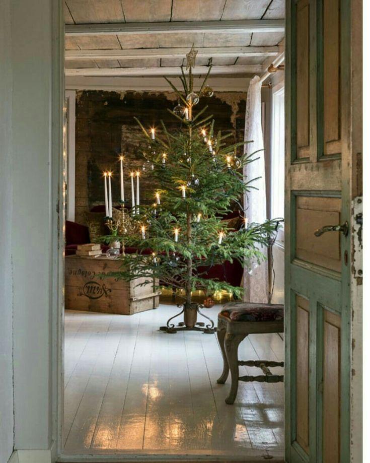 Rustic style Christmas tree p with nice