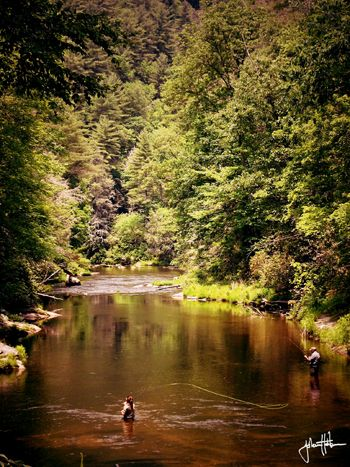 50 best ideas about fishing trips on pinterest trip to for Fly fishing georgia