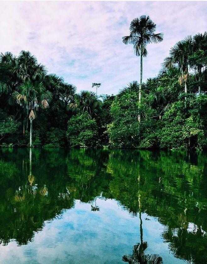 Amazonas, Selva, Peru