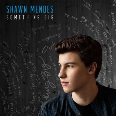 Shawn Mendes releases 'Something Big' single and tour dates with Taylor Swift