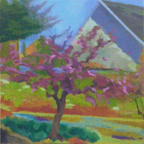 Blossom time St Columb by Tom Henderson Smith approx 50 x 50 cm. Acrylic on stretched canvas