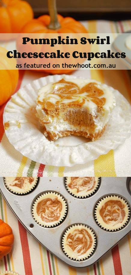 ... ideas, Pumpkin swirl cheesecake and Cheesecake cupcakes on Pinterest