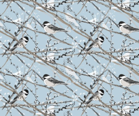 Chickadees and pussywillow