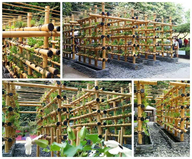 This Babylon Garden was made by Amaury Gallon and inspired by bamboo scaffolding used to build buildings in China. It also represents a new way to cultivate vegetables for urban gardeners. Each bamboo cane has been previously sealed with fine gravel, a layer of hydrophilic felt and a porous irriga…