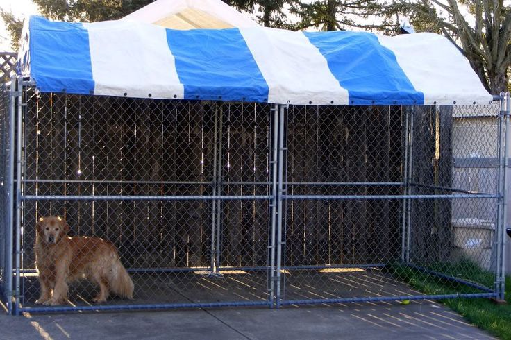 how to make a dog kennel run