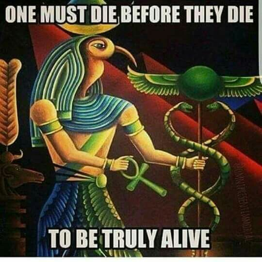 One must die before they die to be truly alive.