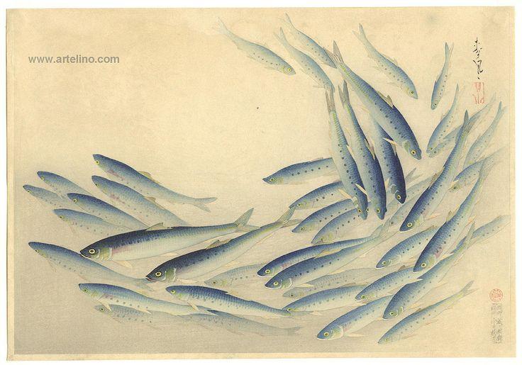 Bakufu Ohno: Sardine- Pilchard- Maiwashi — マイワシ -  (1888-1976)