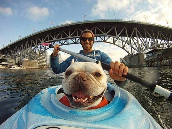 His dog is happy to go kayaking too! Your Pics Galleries